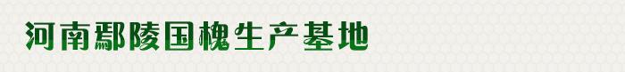 河南鄢陵国槐生产基地是一家生产销售鄢陵国槐的公司,欢迎咨询鄢陵国槐相关问题。