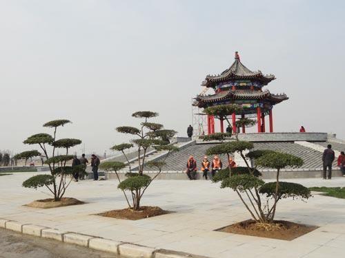 山東曹縣人民公園