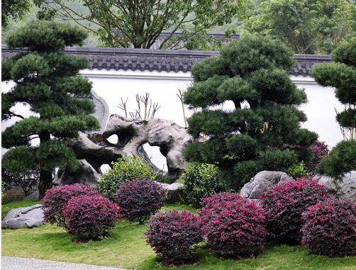 河南園林綠化庭院景觀工程